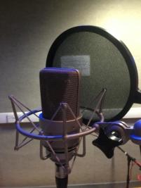 vox mic 1